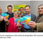 FDP Bergstraße Kreisprogramm